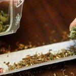 Sousse : un sécuritaire arrêté en possession de10 kg de cannabis