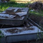 Patrimoine : les cimetières chrétiens en Tunisie, entre sérénité et abandon